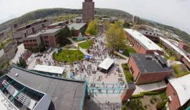 Binghamton University Entrance Essay - image 3