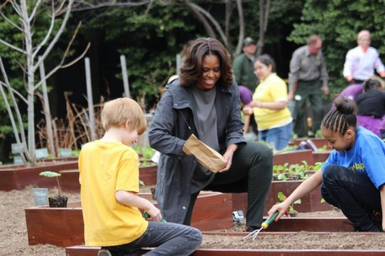 04/03/2014: Michelle Obama to Kids: Bees and Butterflies are 'Dyin' Because of Disease'